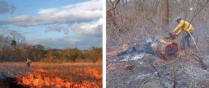 Campaña Un Verano sin Incendios Forestales